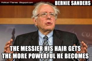 bernie-sanders-hair-meme