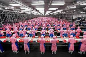 Apple Slaves in China