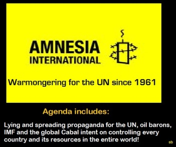 Amnesty International An Instrument of War Propaganda