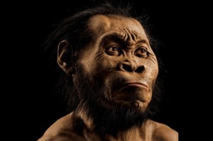 NEW HUMAN SPECIES FOUND IN SOUTH AFRICA