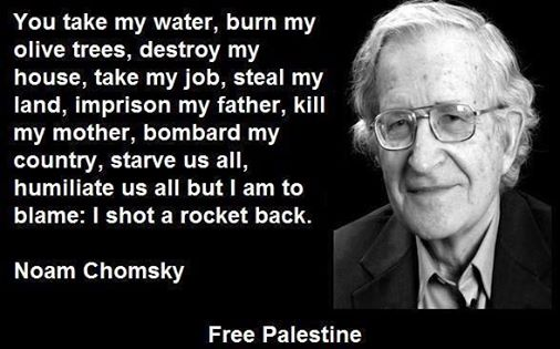 COMFUSING Chomsky ON A FREE Palestine