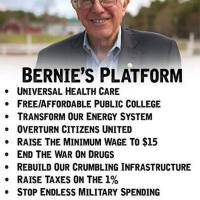 BERNIE SANDERS VISION AND PLATFORM AND 20 POINT SUMMARY