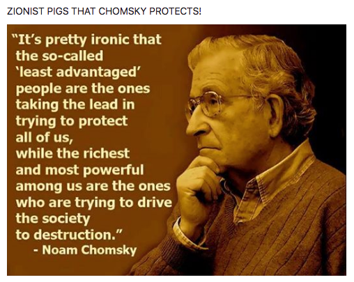ZIONIST PIGS THAT CHOMSKY PROTECTS!
